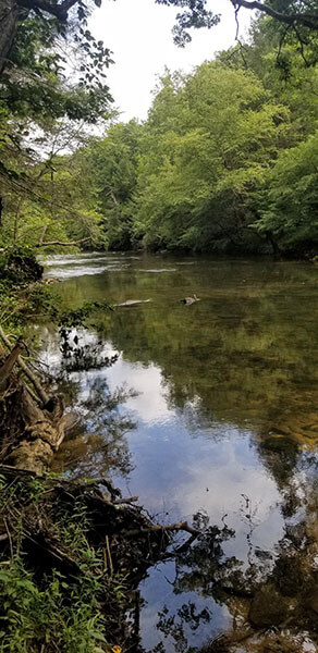 river in Tennessee